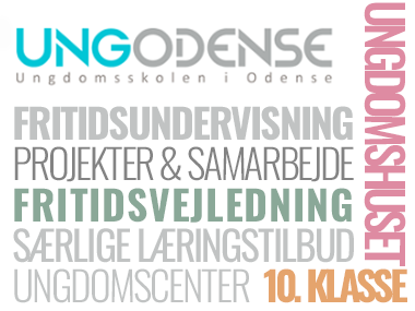 Ung Odense